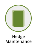 Hedge Maintenance Berkshire